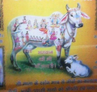 Service Provider of Goddan Pooja Haridwar Uttarakhand